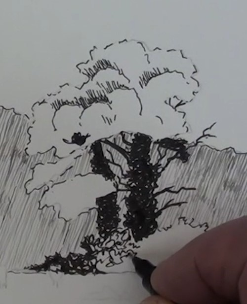 how-to-draw-a-meadow-scene-landscape-in-pen-and-ink-tree