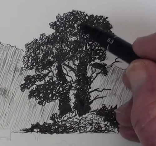 how-to-draw-a-meadow-scene-landscape-in-pen-and-ink-right-hand-side-tree