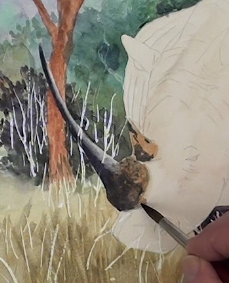how-to-paint-a-rhino-in-watercolor-rhino-horn
