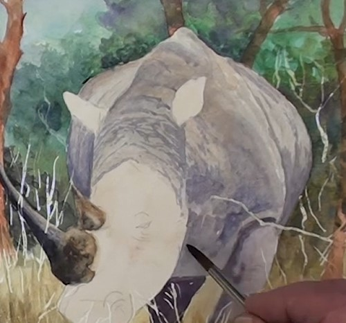 how-to-paint-a-rhino-in-watercolor-rhino-body