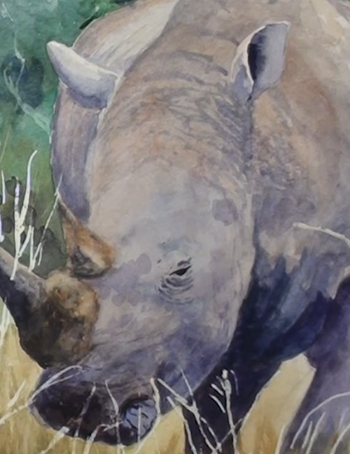 how-to-paint-a-rhino-in-watercolor-rhino-face