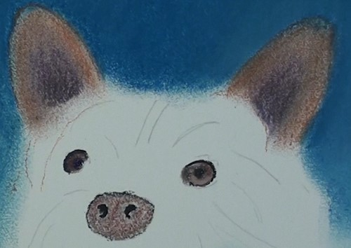 how-to-draw-a-dog-portrait-in-pastel-nose-ears