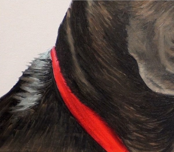 Paint the dog's collar and overlapping hair