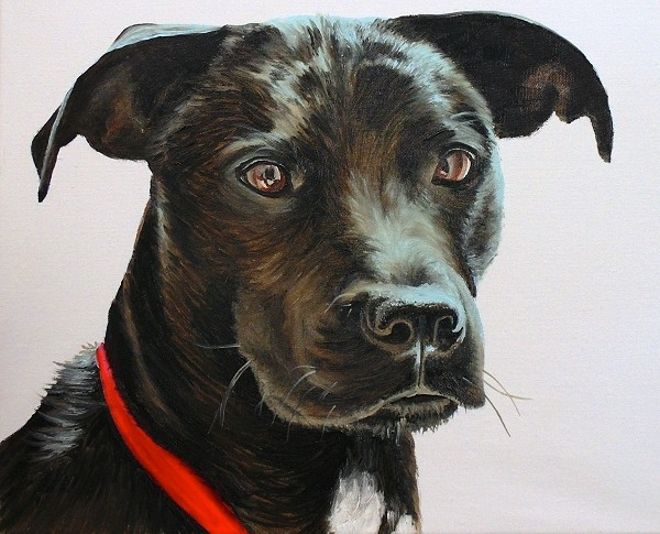 Completed black hair dog painting