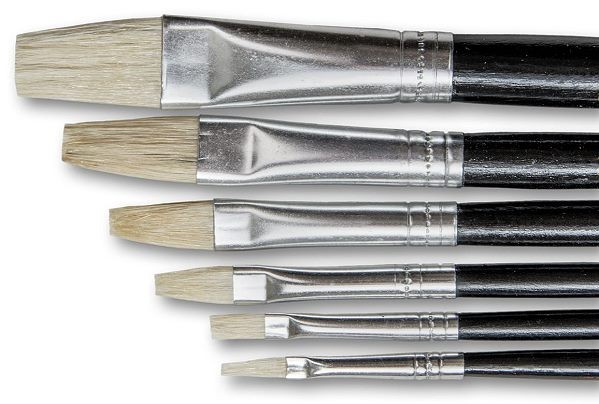 Set of bristle brushes