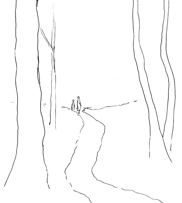 initial forest and path sketch