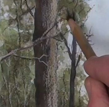 Drawing overlapping branches