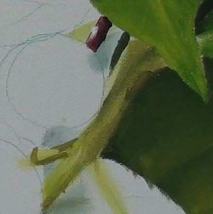 Stems after shading has been added - how to paint berries in acrylic